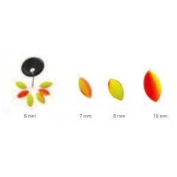 Rigoval Ovale Bicolore 10mm