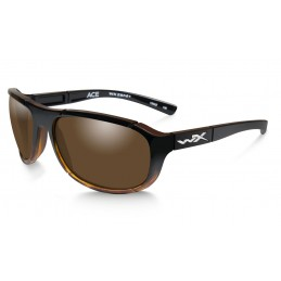 LUNETTES ACE POL. BRONZE/GLOSS TORTOISE FADE